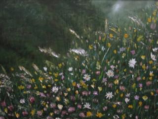 Riva Valdobbia  valSesia fiori montani