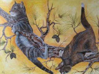 Gatti su ramo alla scoperta della vita.